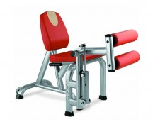 LEG EXTENSION LEG CURL &
